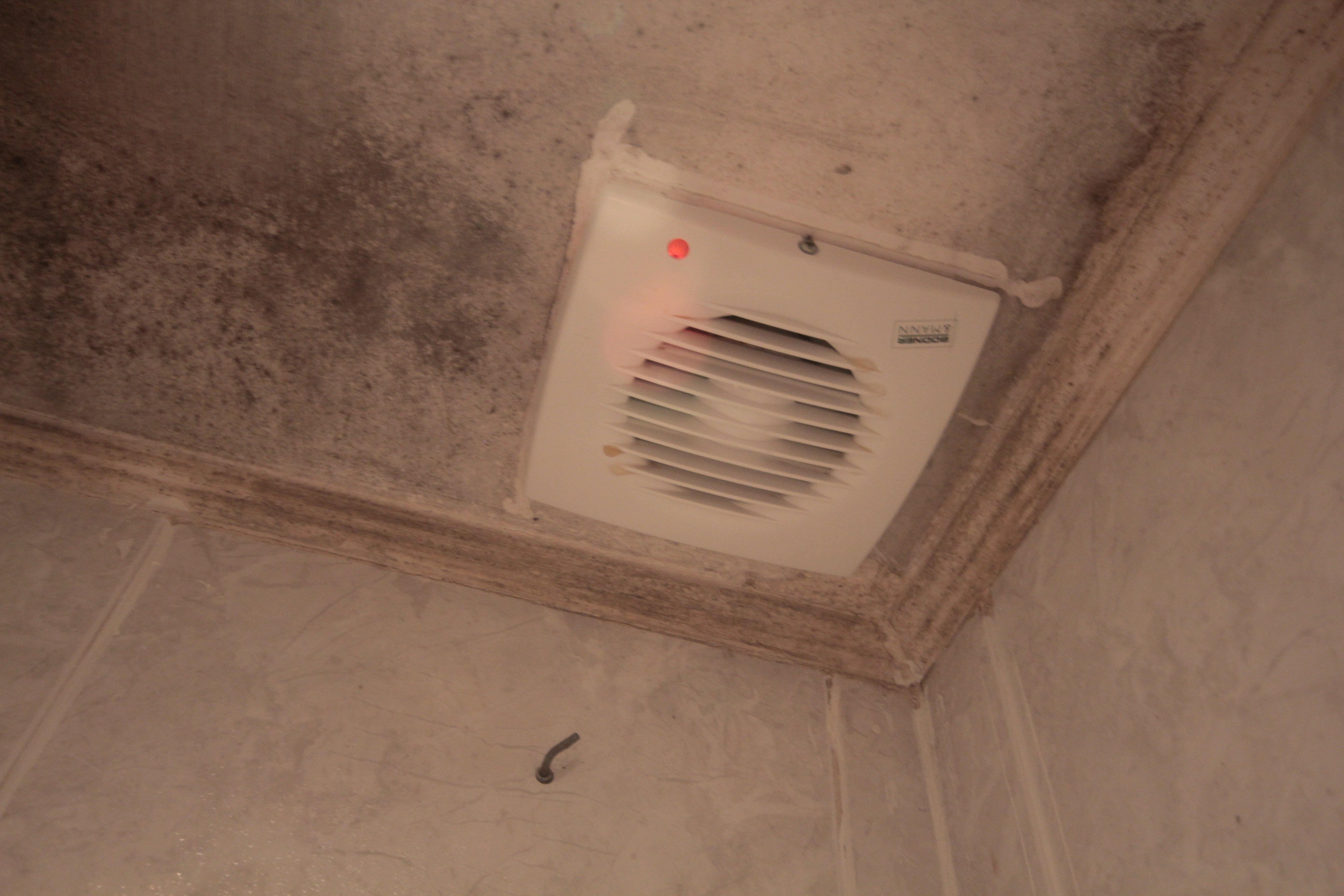 Bathroom-mold