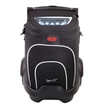 Zen-O carrying case