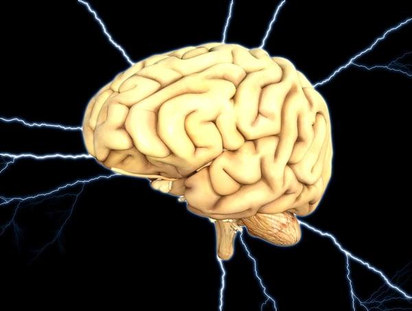 brain-1845940_1280