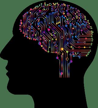 brain-4863428_1280