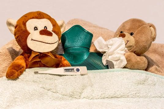 cold-rest-toy-teddy-bear-textile-duvet-1203560-pxhere.com