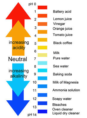 pH levels from alkaline to acidic.