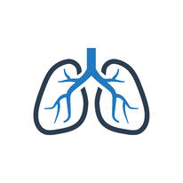 Illustration of human lungs.