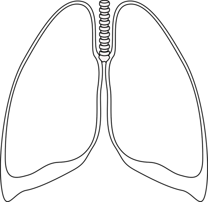 lungs-308055_1280