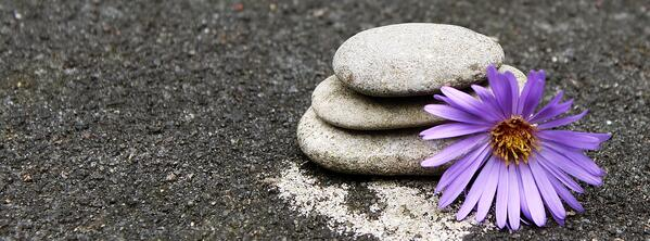 Rocks stacked on sand with a purple flower.