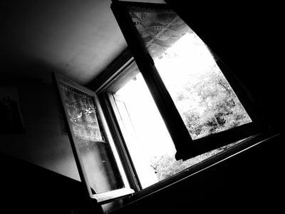 open-window(1)