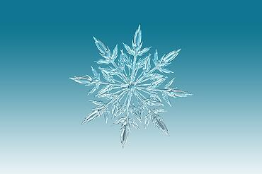 Snowflake ice crystal