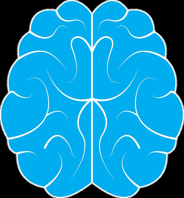 www.maxpixel.net-Design-Icon-Symbol-Idea-Human-Brain-Background-1710293